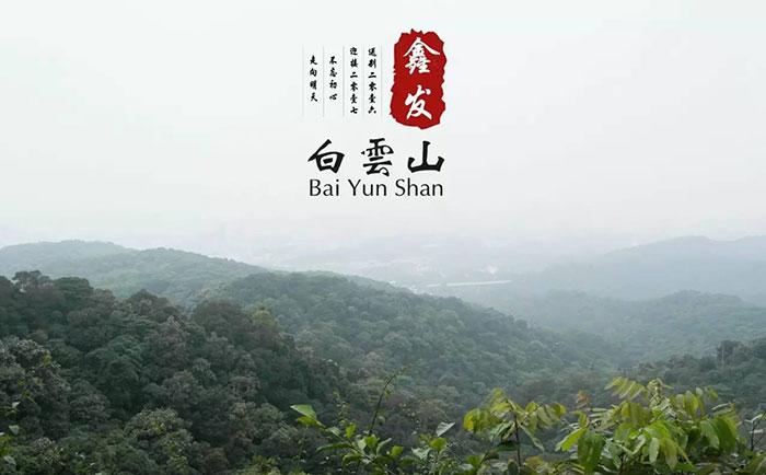 鑫发白云山